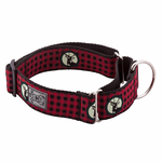 RC Collars and Leashes